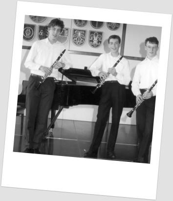 Trio Vivo alt 6