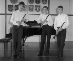 Trio Vivo alt 3